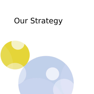 हमारी रणनीति